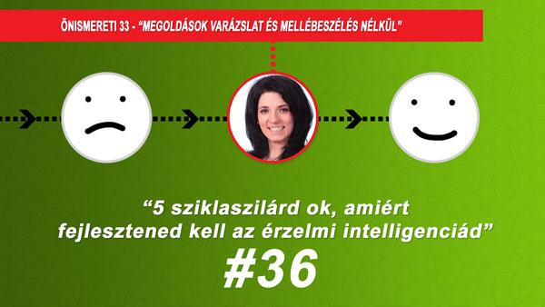 #36 5 sziklaszilárd ok, amiért fejlesztened kell az érzelmi intelligenciád